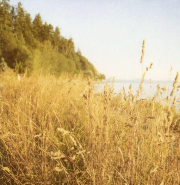 amanda gilligan: Simply Stunning, Simply Beautiful Sigh, Beautiful Landscape, Scenic Beautiful