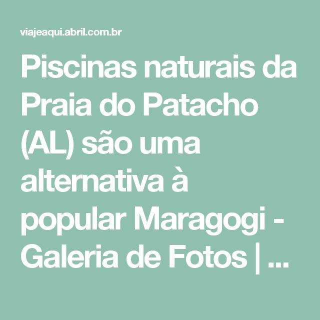 Piscinas naturais da Praia do Patacho (AL) são uma alternativa à popular Maragogi - Galeria de Fotos | Viagem e Turismo