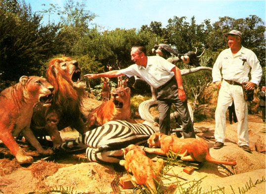 """Walt Disney checks out some of the """"actors"""" for the Jungle Cruise attraction in Adventureland."""