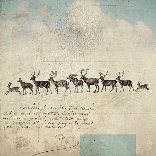 .Fionawatson, Reindeer, Collage Art, Fiona Watson, Illustration, Old Letters, Antlers Art, Storms, Digital Prints