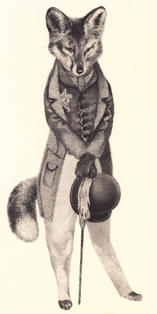 Mr. Fox.Illustration, Art, A Tattoo, Foxy, Children Book, Woodland Nurseries, Fantastic Mr Foxes, Animal, Tops Hats