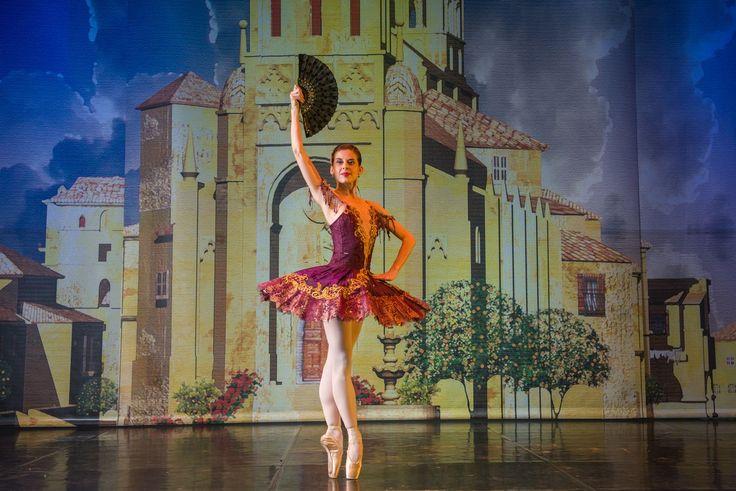 Joburg Ballet | 2015 | Don Quixote - Burnise Silvius | © Lauge Sorensen | via #BalletSynopsis
