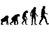 You can thank evolution for some of our aches and pains