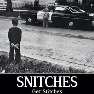 Sniches get stiches