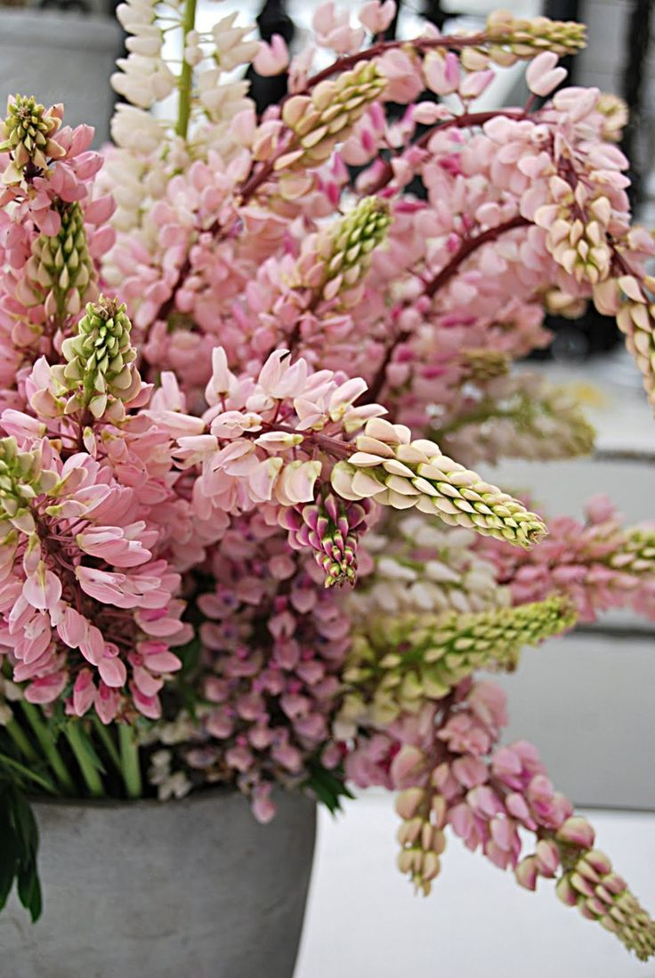 Bucket of Pink Flowers - So Pretty!