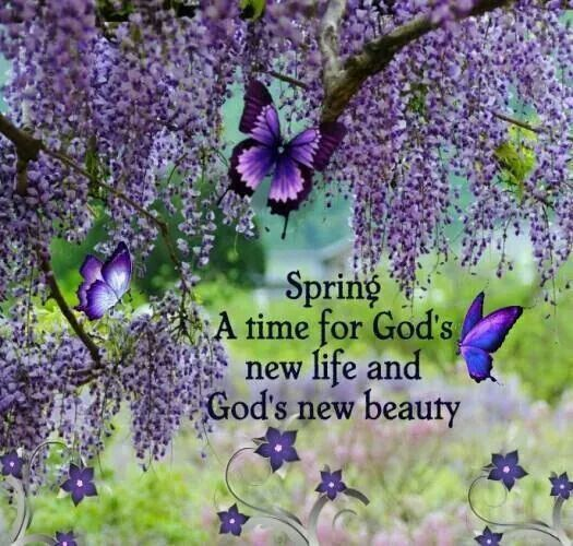 Spring, A Time For God's New Life And God's New Beauty spring spring quotes spring image quotes spring quote images