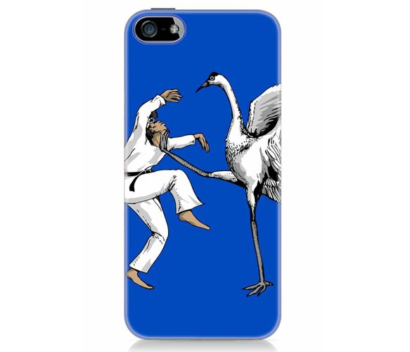 Karate iPhone 5 Case