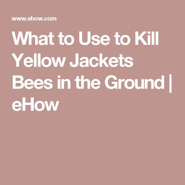 What to Use to Kill Yellow Jackets Bees in the Ground | eHow