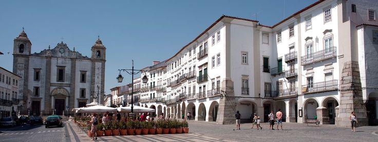 Day Trip to Alentejo   Lisbon Through Four Seasons Eyes