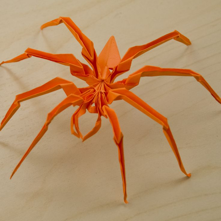 origami spider folded pinterest spider and origami