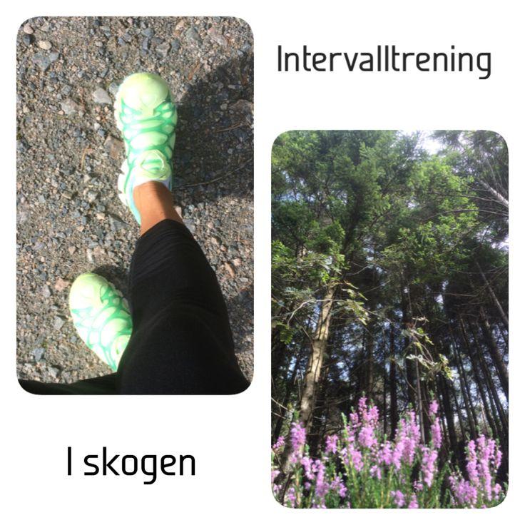 Intervalltrening i skogen