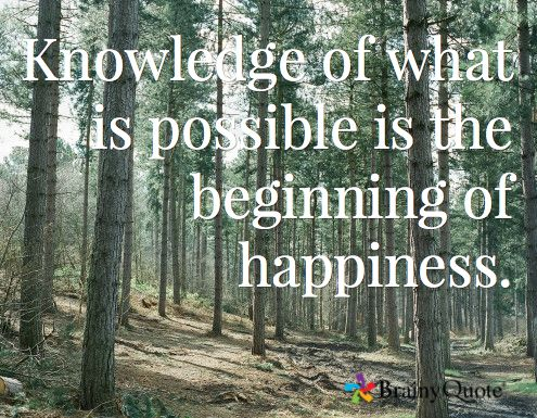 Knowledge of what is possible is the beginning of happiness. –George Santayana