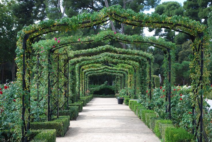 Retiro Park, Rose garden, Madrid, Spain