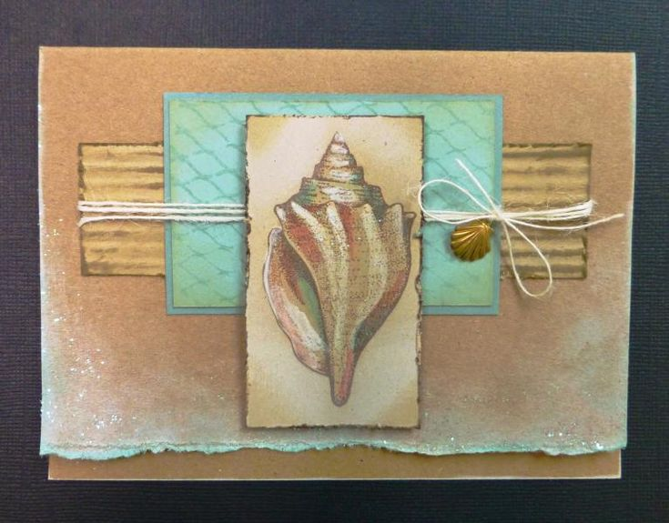 CC528 Cantharus Shell by hobbydujour - Cards and Paper Crafts at Splitcoaststampers