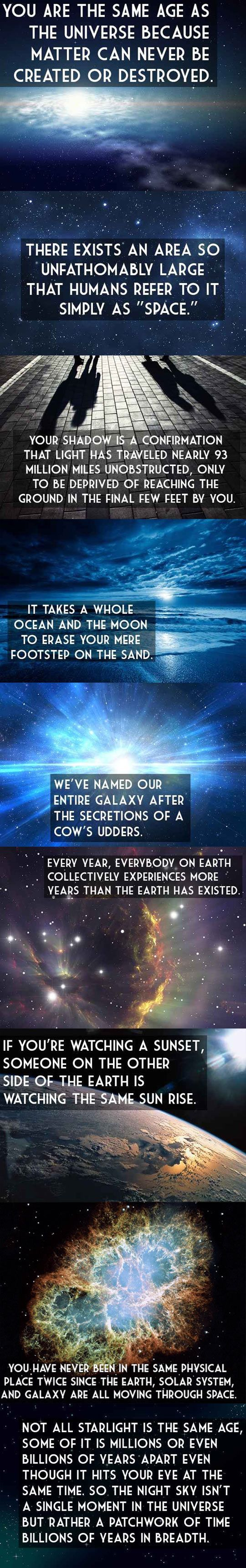 The Universe And Your Place In It i pinned this on my history board but could also be science i guess: