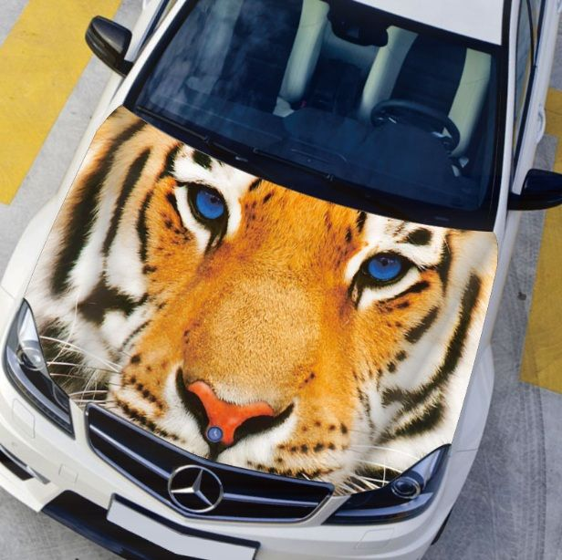 Best Creati Images On Pinterest Car Wrap Vehicle Wraps And Cars - Best automobile graphics and patternsbest stickers on the car hood images on pinterest cars hoods