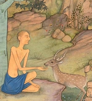 Majnun and the deer