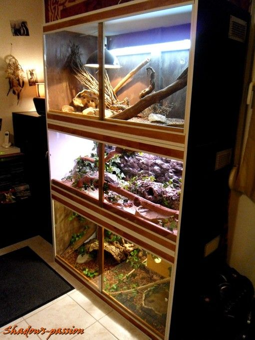 17 meilleures id es propos de terrarium pour tortue sur pinterest enclos pour reptiles. Black Bedroom Furniture Sets. Home Design Ideas
