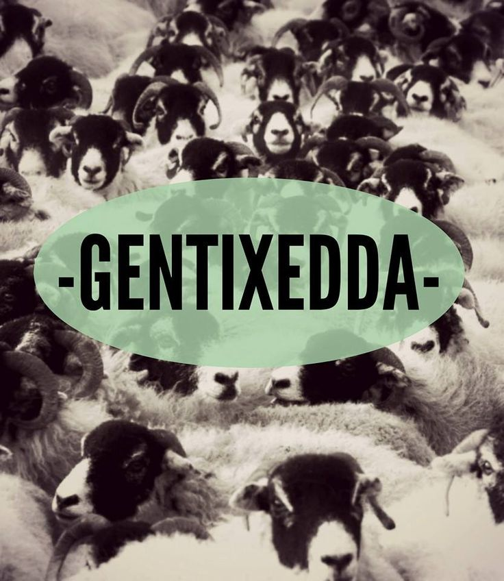 Quanta gente !!  Gentixedda è usato anche per dire ironicamente che ad un dato evento non c'è quasi nessuno.