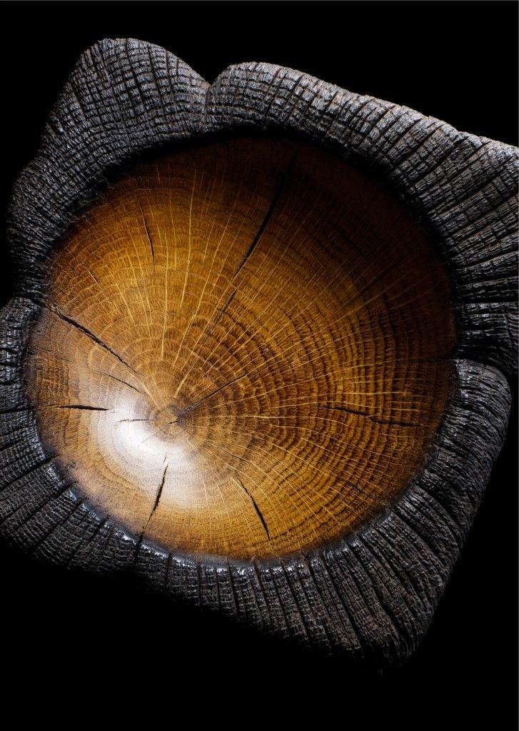 burn wood, nada está perdido...