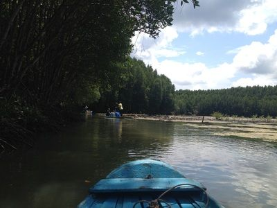 Can Gio Mangrove Forest River Tour
