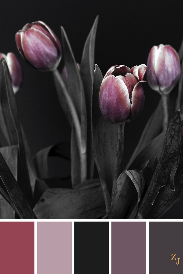 ZJ Colour Palette 430 #colourpalette #colourinspiration