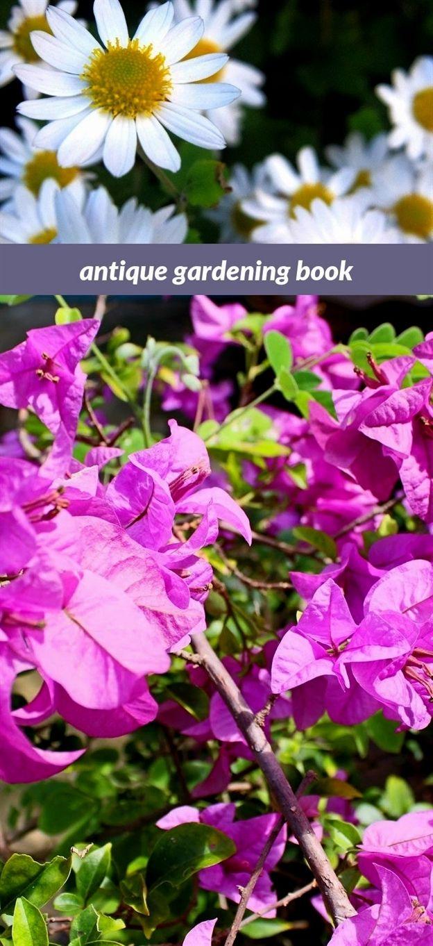 Antique Gardening Book 81 20180915175053 53 Outdoor Gardening