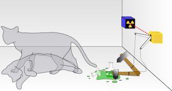 http://en.wikipedia.org/wiki/Measurement_problem and Schrödinger's cat - Wikipedia, the free encyclopedia