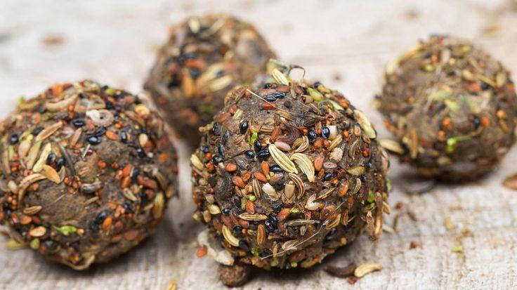 Seedbombs ermöglichen das schnelle und unkomplizierte Pflanzen von Saatgut. (Quelle: imago/blickwinkel)