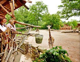 Auf Abenteuertour im tierischen Erlebnis-Zoo