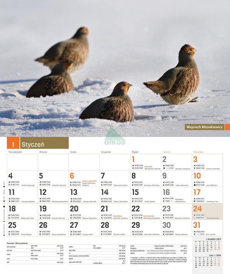 Kalendarz ścienny myśliwski 2016 / Inne / Brać Łowiecka / CZASOPISMA - Klub Sprzedaży Wysyłkowej Oficyny Wydawniczej Oikos