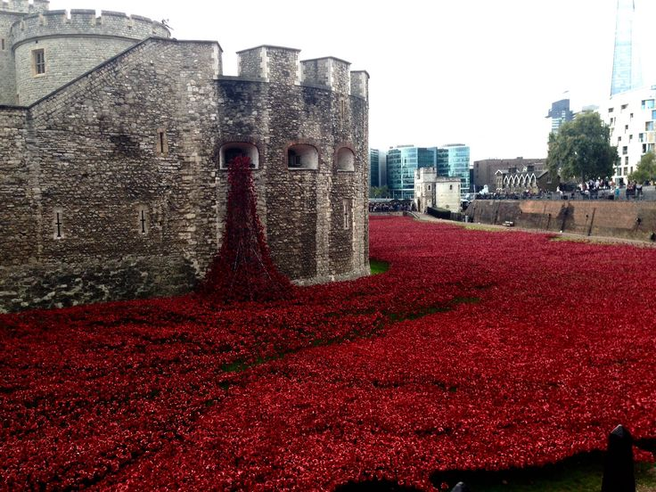 Memorial display currently around the Tower of London. Over 880,000 poppies,all placed by volunteers,representing those British and Commonwealth soldiers killed in WWI.