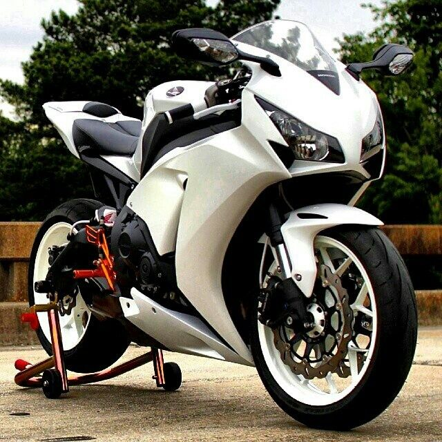 Cbr1000rr Mascunanabear: 1000+ Ideas About Cbr On Pinterest