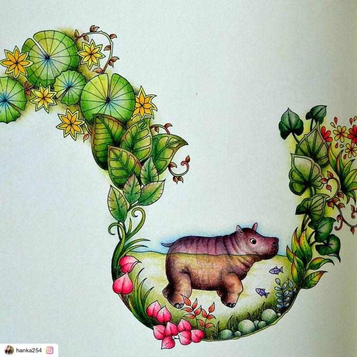 "Reposted using @ziapplications  #ziapplications ・・・ ""#magicaljungle #magicaljunglecoloringbook #johannabasford #coloringbook #colorpencil #prismacolor #prismacolorpremier #art #hippo #colorfull #fabercastell #polychromos #kredki #kolorowanki #kolorowankidladorosłych #kolorowamafia #magicznadżungla"""