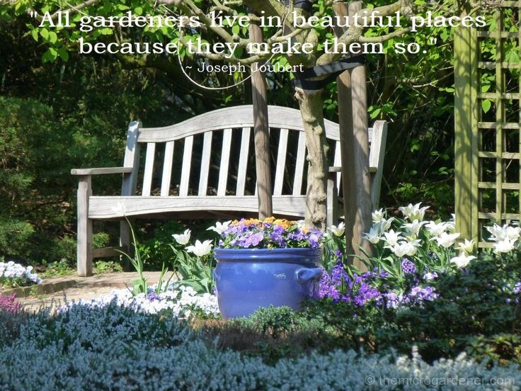 All gardeners live in beautiful places because they make them so. More tips @ themicrogardener.com