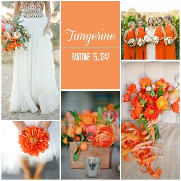 Loving this Tangerine mood board inspired by Pantone spring 2015 top 10 colours! #pantone #colours