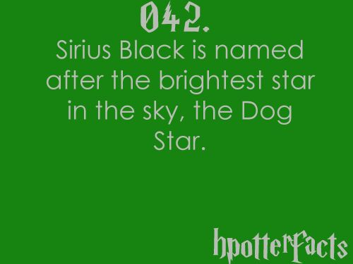Harry Potter Facts #042:  Sirius Black is named after the brightest star in the sky, the Dog Star.