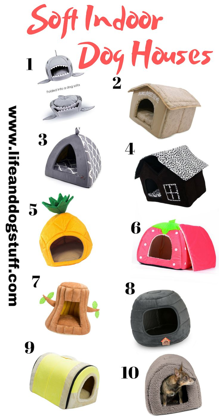 10 Finest Gentle Indoor Canine Homes For Small Canine