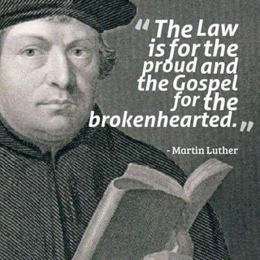 Martin Luther Quotes Stunning 207 Best Martin Luther Quotes Images On Pinterest  Martin Luther