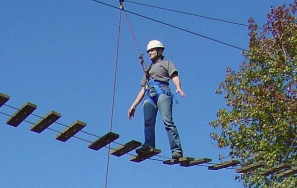 Related image | Ropes Course Elements | Ropes course ...