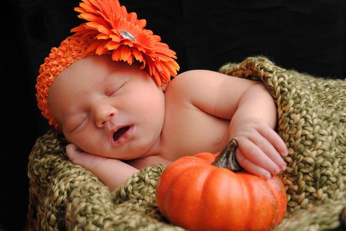first Halloween/Thanksgiving picture idea? We already have the pumpkins! Just need Braden(: