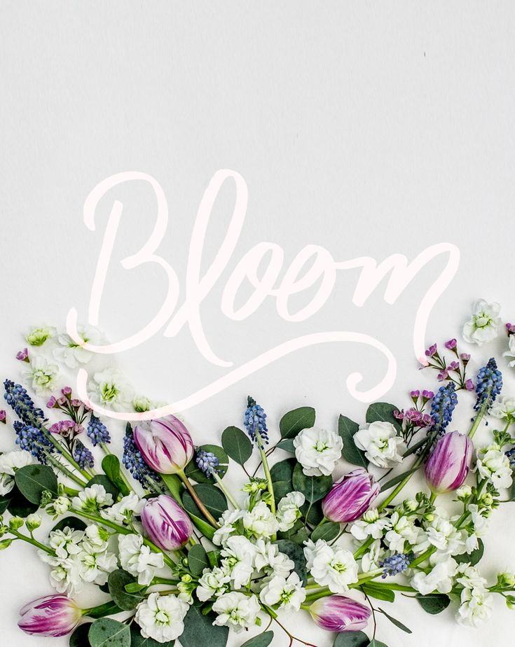 The month of May is the month of blooming, becoming, and being everything you are. I love this month as we close out spring and open ourselves up to summer. Read more about the month ahead on The Fresh Exchange.