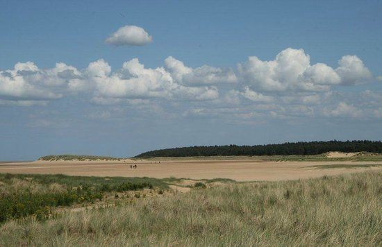 Photos of Holkham National Nature Reserve, Wells-next-the-Sea - Attraction Images - TripAdvisor