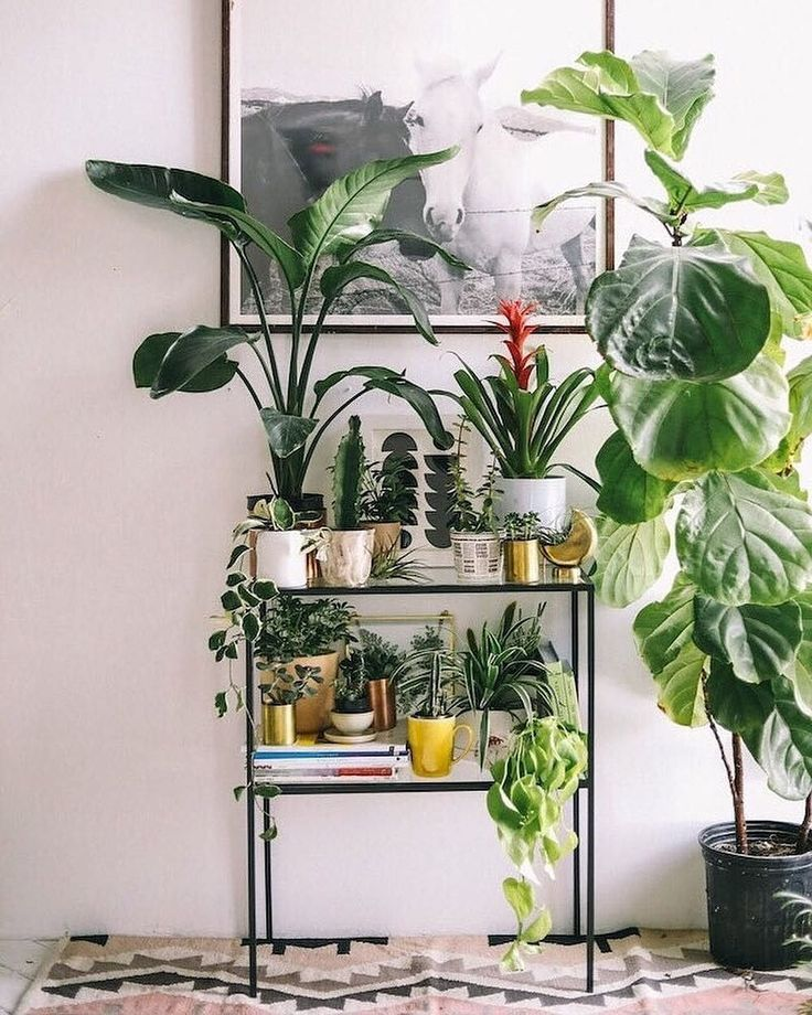 Half Moon Planter | Urban Outfitters | Home | Terrariums and Gardens #UOHome #UOEurope #UrbanOutfittersEU via @urbanoutfitterseu