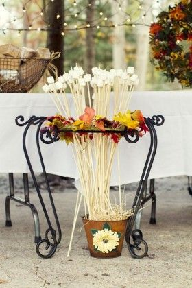 fall country s'more wedding bar