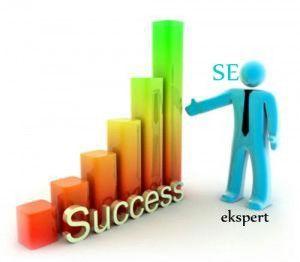 Valg af den rigtige SEO ekspert for din webshop
