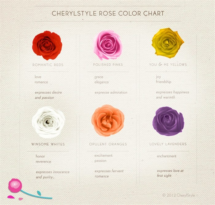 Rose Colors and Their Meanings