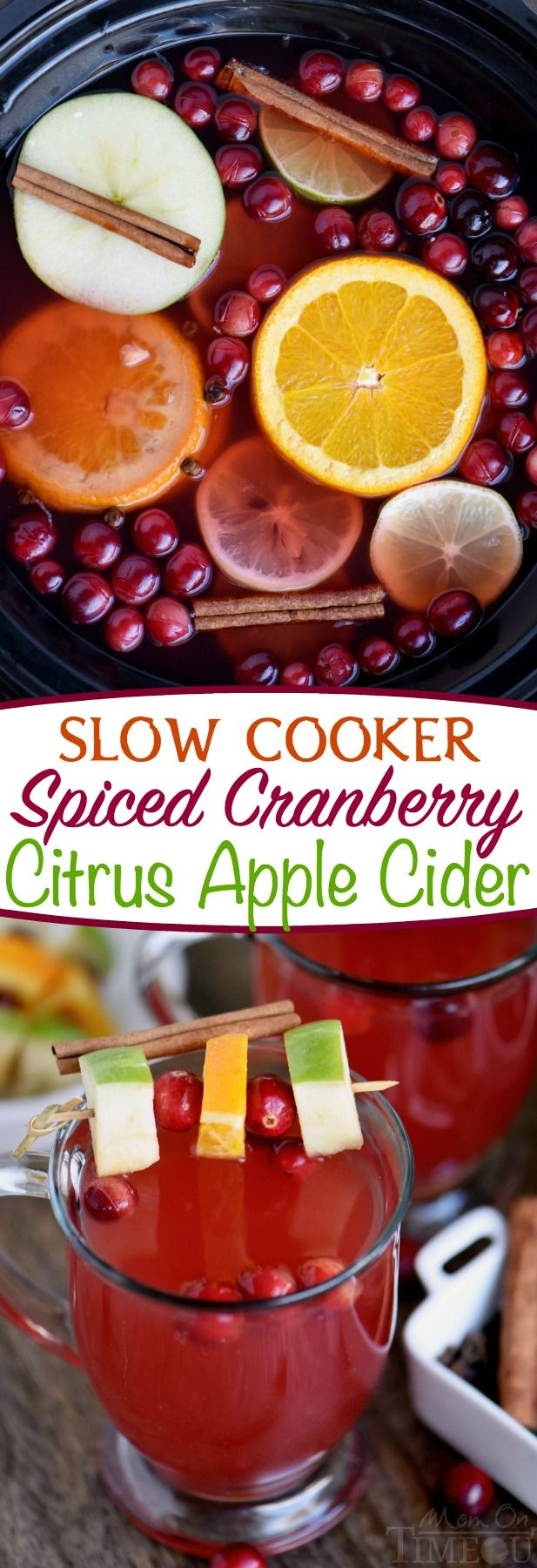 This Slow Cooker Spiced Cranberry Citrus Apple Cider is the beverage of choice this season! Fill your home with it's delightful fragrance and your belly with it's spicy warmth!