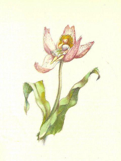 135 best jiri trnka images on pinterest   fairy tales, grimm and