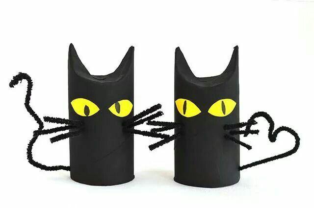 Zwarte closetrol katten.